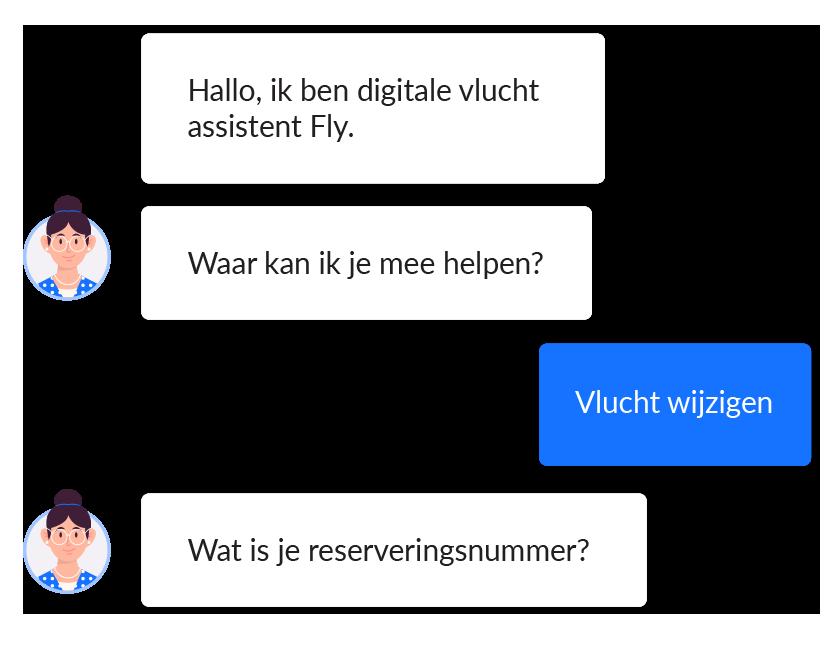 Chatbot-fly-voorbeelden